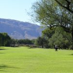 Forty Niner Country Club overlooking a fairway of the golf course in tucson arizona
