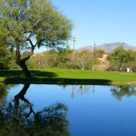 Forty Niner Country Club green by the lake at the golf community in Tucson Arizona
